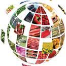 صنعت صنایع غذایی