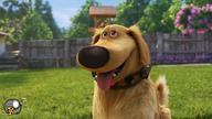 انیمیشن روز داگ
