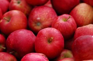 نیازهای زیستی غیر آب و هوائی محصول سیب