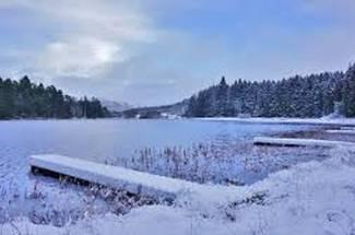 مدیریت آب و تغذیه در استخر های زمستان گذرانی