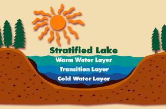 دمای آب در استخر پرورش ماهیان گرم آبی
