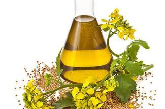 ترکیب اسید های چرب و مزایای تغذیه ای روغن کلزا