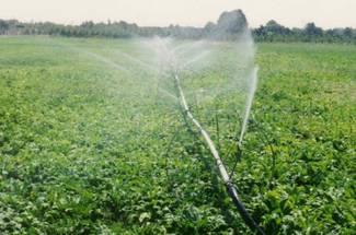 مقدار آب مورد نیاز سويا